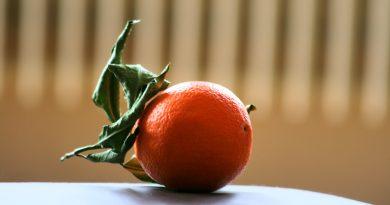 Was kann man aus Orangen machen?